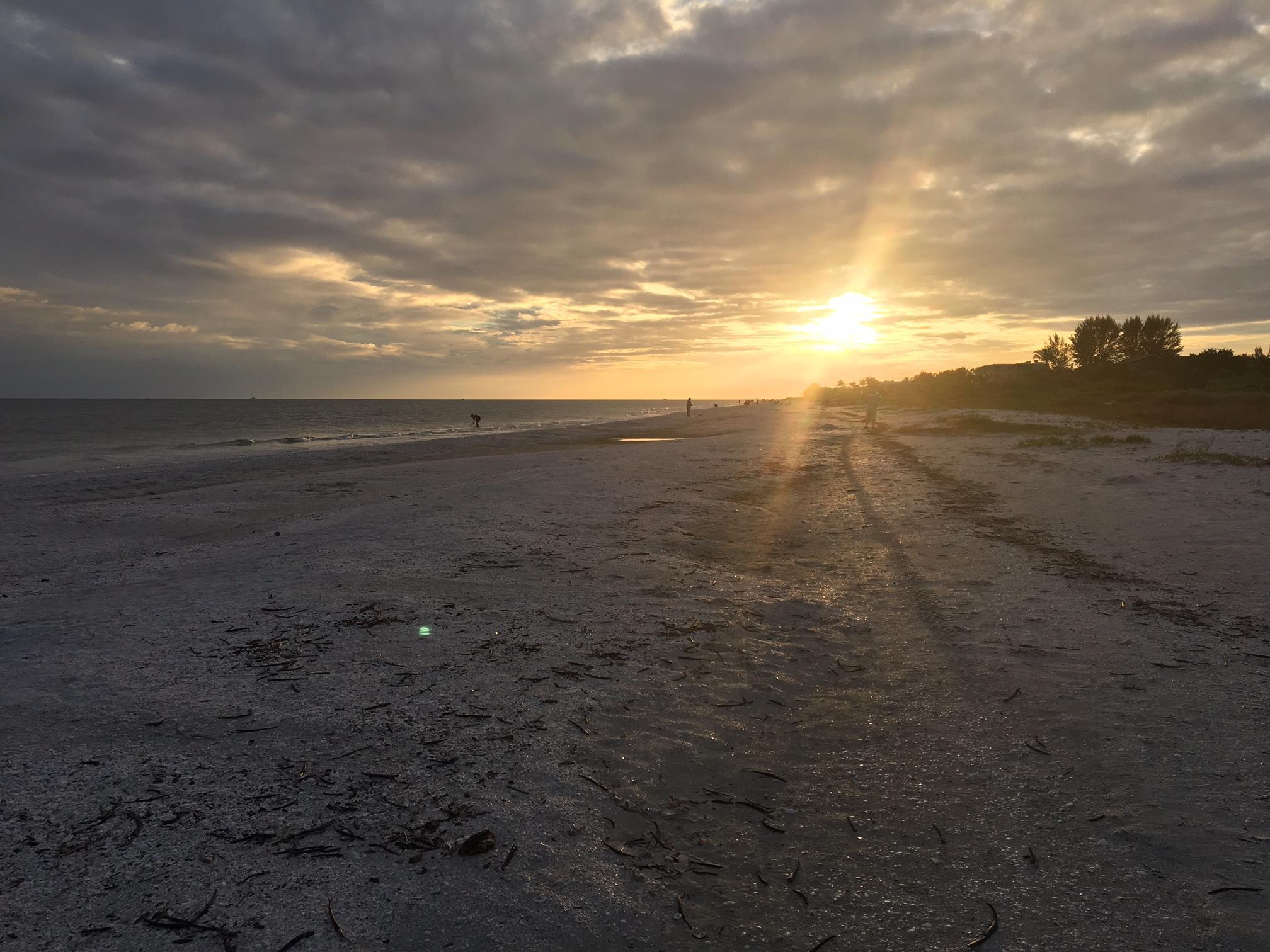 Testimonials - Seahorse Cottage of Sanibel Florida